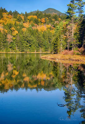 Photograph - Falls Pond And Bear Mountain 0642 by Dan Beauvais