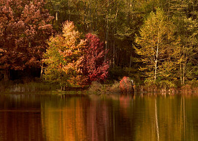 Fall's Reflection On Swan Lake Art Print by Bedford Shore Photography