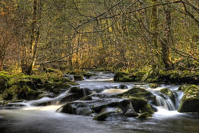 Photograph - Falltime In Skamania County by Wes and Dotty Weber