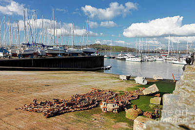 Photograph - Falmouth Haven Slipway  by Terri Waters