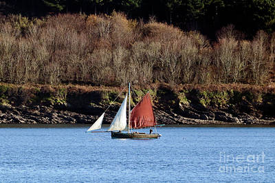 Photograph - Falmouth Oyster Boat by Terri Waters