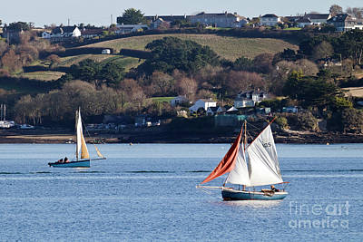 Photograph - Falmouth Working Boats by Terri Waters