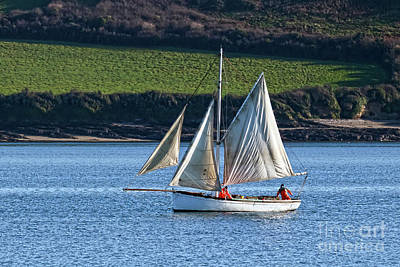 Photograph - Falmouth Working Oyster Boat by Terri Waters