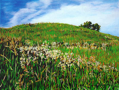 Drawing - False Gromwell Slope by Bruce Morrison