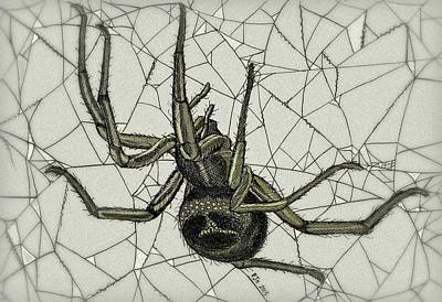 Indian Ink Mixed Media - False Widow by Philip Harvey