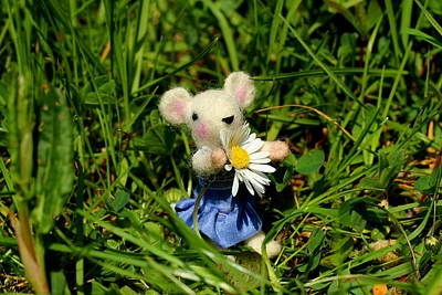 Mouse Photograph - Family Mouse On The Spring Meadow by Heike Hultsch