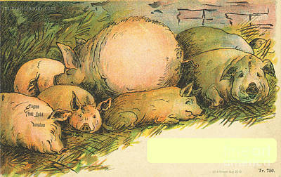 Family Of Pigs Art Print by Artist from the past