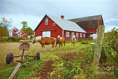 Photograph - Family On The Farm by Amazing Jules