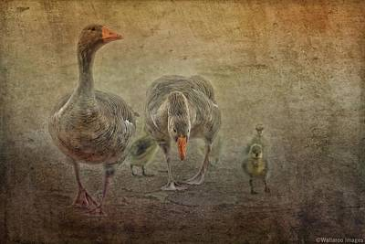 Photograph - Family Outing by Wallaroo Images