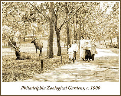 Photograph - Family, Philadelphia Zoo, 1900 by A Gurmankin