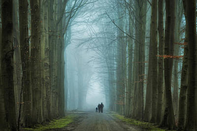 Winter Trees Photograph - Family Walk by Martin Podt