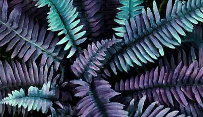 Digital Art - Fanciful Ferns In Purple by Patricia Strand