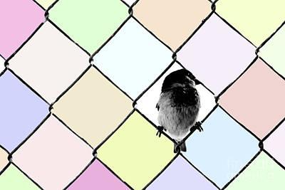 Digital Art - Fancy Colors by Afrodita Ellerman