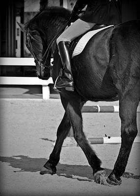 Kentucky Horse Park Digital Art - Fancy Feet by Hannah Breidenbach