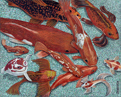 Drawing - Fancy Fish by Nicole I Hamilton