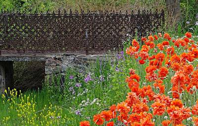 Photograph - Fancy Foot Bridge And Poppies by Stephanie Calhoun