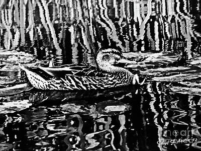 Photograph - Fancy For Ducks Black And White Fine Art by Carol F Austin