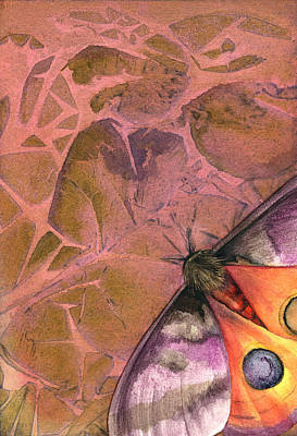 Abstract Wildlife Drawing - Fantasmoth 2 by Mindy Lighthipe