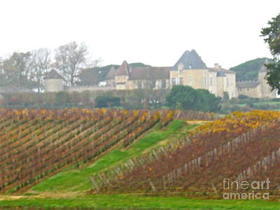 Photograph - Fantastic French Vineyard by Barbara Plattenburg