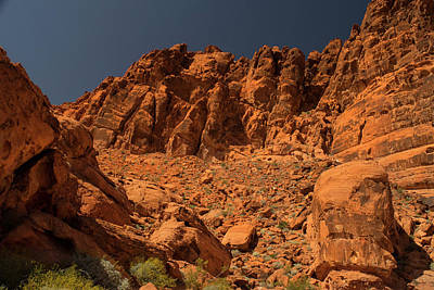 Photograph - Fantastic Landscape Valley Of Fire by Frank Wilson