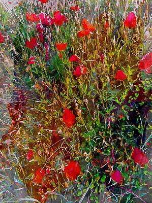 Photograph - Fantastical Red Poppies by Dorothy Berry-Lound