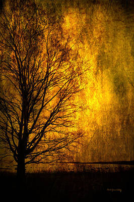 Photograph - Fantasy Dawn by Randi Grace Nilsberg