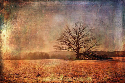 Photograph - Fantasy Field by Randi Grace Nilsberg