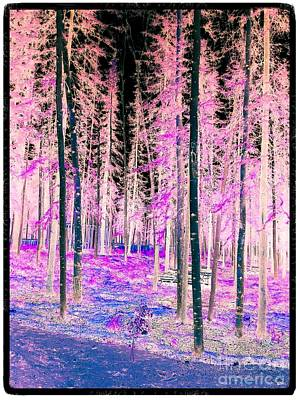 Photograph - Fantasy Forest by Linda Bianic