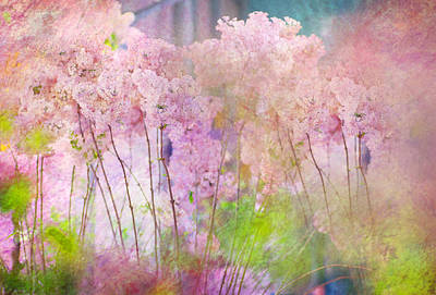 Fantasy Garden Of Spring Art Print