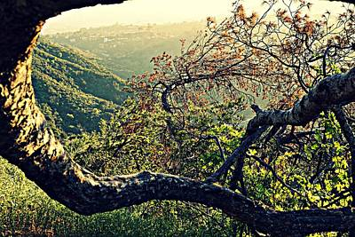Hollywood Wall Art - Photograph - Fantasy Land by Kelly Baker