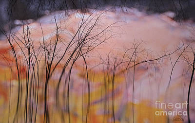 Photograph - fantasy landscape trees - Fleeting Forest by Sharon Hudson
