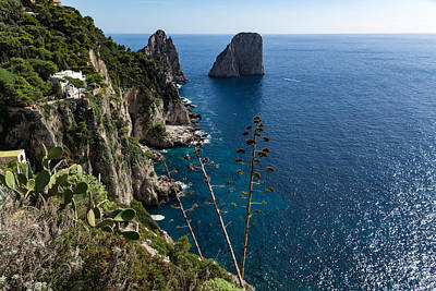 Photograph - Faraglioni Sea Stacks And Agave Bloom Spikes - The Magic Of Capri Italy by Georgia Mizuleva