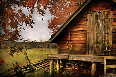 Farm - Barn - Shed Out Back Art Print by Mike Savad
