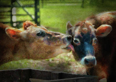 Animal Photograph - Farm - Cow - Let Mommy Clean That by Mike Savad