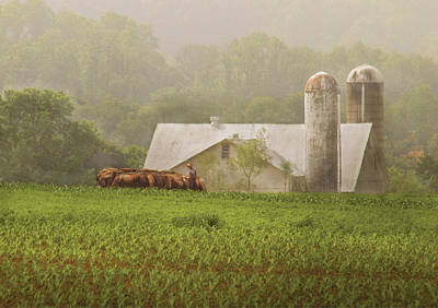 Farm - Farmer - Amish Farming Art Print by Mike Savad