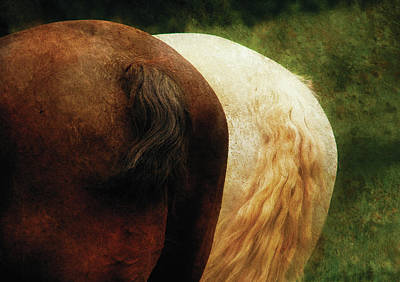 Farm - Horse - Tails You Win Art Print