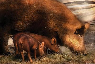 Farm - Pig - Family Bonds Art Print by Mike Savad