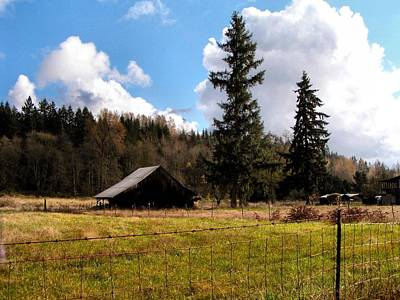 Photograph - Farm And Forest by Sadie Reneau