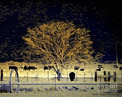 Photograph - Farm Art  by Bobbee Rickard