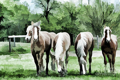 Photograph - Farm Draft Horses by Wilma Birdwell