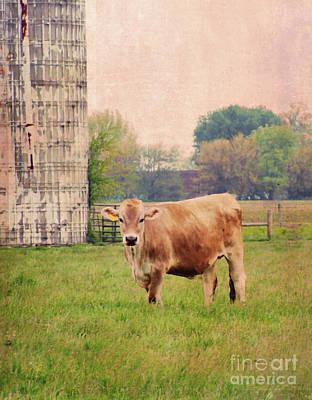 Digital Art - Farm Dreamscape by Ilona Erwin