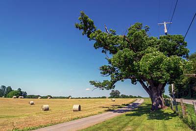 Photograph - Farm - Ellicott City by Brian Wallace