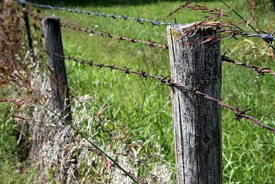 Farm Fence Original