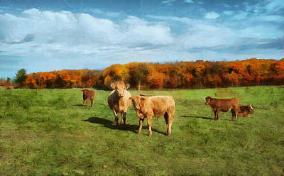 Digital Art - Farm Field And Brown Cows by JGracey Stinson