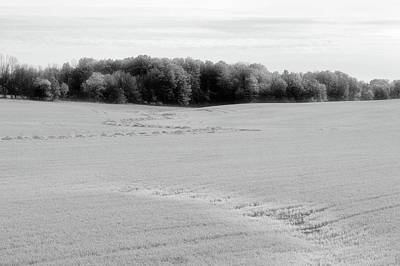 Photograph - Farm Field In May Bw  by Lyle Crump