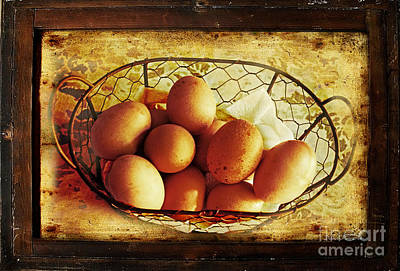 Photograph - Farm Fresh Eggs II by Debbie Portwood