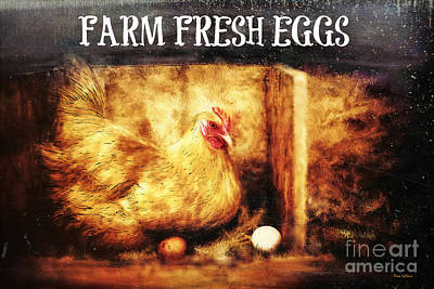 Digital Art - Farm Fresh Eggs by Tina LeCour