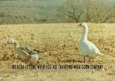 Farm Geese Quote Art Print by JAMART Photography