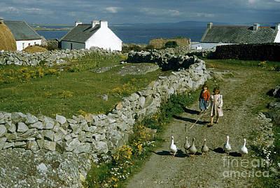Photograph - Farm Girls Herd Geese Along Stony Road Near Farm Cottages by Volkmar K Wentzel