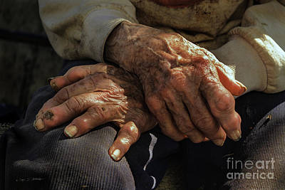 Photograph - Farm Hands by Craig J Satterlee